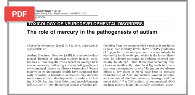 The Role of Mercury in the Pathogenesis of Autism article